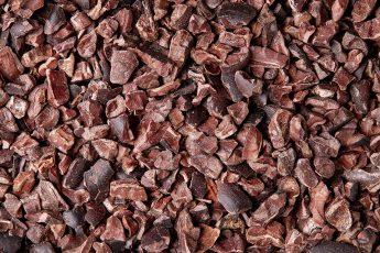 cacao nibs kixocolatl mathieu brees